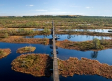 The Estonian peat-bog landscape